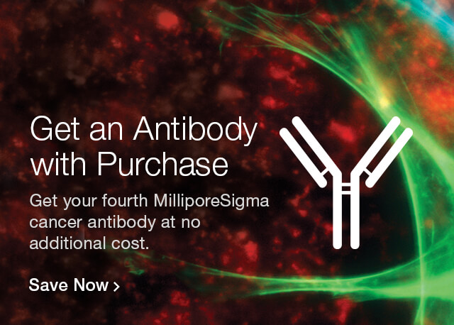 Save on Cancer Antibodies