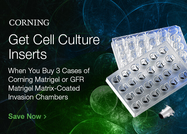 Get Cell Culture Inserts