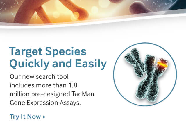 Gene Expression Search Tool