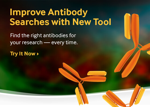 Search Over 200,000 Antibodies