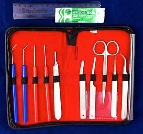 DR Instruments Entomology Dissecting Kit&nbsp;<img src=