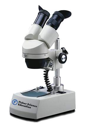 Fisher Science Education&trade; Intermediate+ Stereomicroscopes&nbsp;<img src=