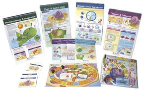 NewPath Learning&trade; Next Generation Science Standards Skill Builder Kit: From Molecules to Organisms&nbsp;<img src=