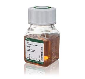 Gibco&trade;&nbsp;Fetal Bovine Serum, Qualified, USDA-approved Regions&nbsp;<img src=