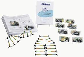 Lab-Aids&trade;&nbsp;Molecular Model of DNA and its Replication&nbsp;<img src=