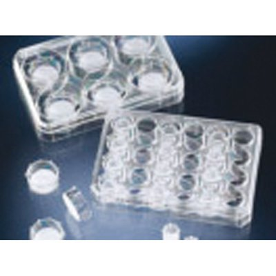 Thermo Scientific&trade;&nbsp;Nunc&trade; Polycarbonate Cell Culture Inserts in Multi-Well Plates À utiliser avec les multipuits 24 puits ; <0,85 x 10<sup>5</sup> pores/cm<sup>2</sup> Thermo Scientific&trade;&nbsp;Nunc&trade; Polycarbonate Cell Culture Inserts in Multi-Well Plates
