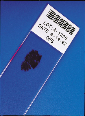 Brady™Nylon Thermal Transfer Printer Labels Shape: Rectangle and circle; Color: White; Dimensions: 15.24 H x 41.28 Wmm products