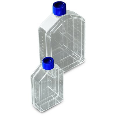 Thermo Scientific&trade;&nbsp;Nunc&trade; Cell Culture Treated Flasks with Solid Caps Nunc Flask 80cm<sup>2</sup>, Vent/Close Cap, Straight Neck, 50/Cs Thermo Scientific&trade;&nbsp;Nunc&trade; Cell Culture Treated Flasks with Solid Caps