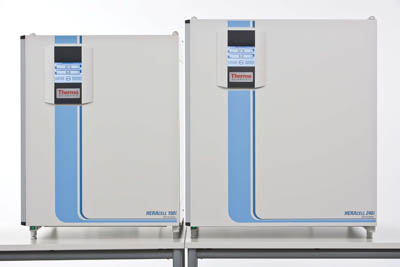 Thermo Scientific&trade;&nbsp;Heracell&trade; 240i CO<sub>2</sub> Incubators with Stainless-Steel Chambers  CO2 Incubators