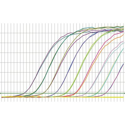 Thermo Scientific™Maxima Probe qPCR Master Mix (2X), with separate ROX vial 50UM, 250UL Thermo Scientific™Maxima Probe qPCR Master Mix (2X), with separate ROX vial