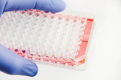 Thermo Scientific™ Nunc™ Edge 2.0 96-Well Plates Treated; 400uL; 75mm; Sterile Products