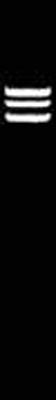 Thermo Scientific™Cfr9I (XmaI) 10U/μL, 300U Thermo Scientific™Cfr9I (XmaI)