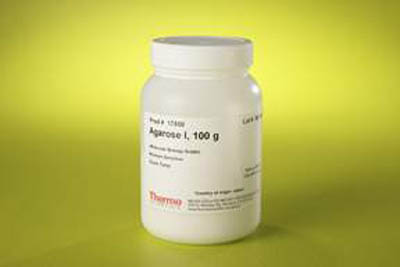 Thermo Scientific™ Agarose I (Molecular Biology Grade) Agarose I; 500g Thermo Scientific™ Agarose I (Molecular Biology Grade)