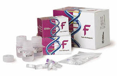 Fisher BioReagents&trade;&nbsp;<i>Taq</i> DNA Polymerase In Buffer B; 5 x 500U Fisher BioReagents&trade;&nbsp;<i>Taq</i> DNA Polymerase